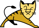 Tomcat Server's icon